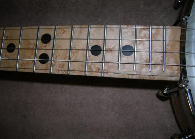 Birds Eye Maple Fret Board Detail with Ebony Position Markers