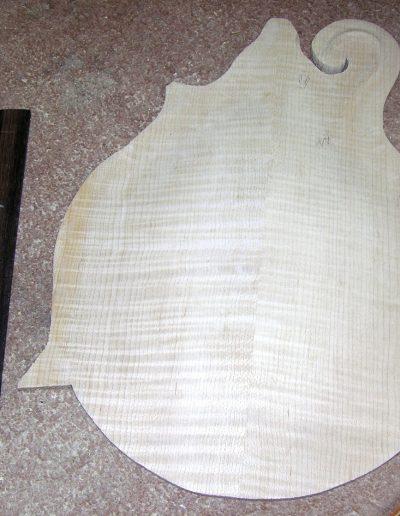 F-5 Mandolin Back with Radius Fingerboard in Ebony