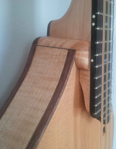 Mandolin Neck Joint Detail