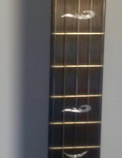 Mother of Pearl Inlays in Ziricote Fingerboard