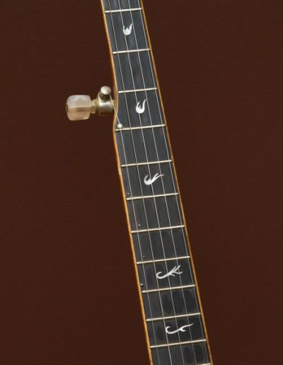 Mother of Pearl Inlays on Ebony Fingerboard
