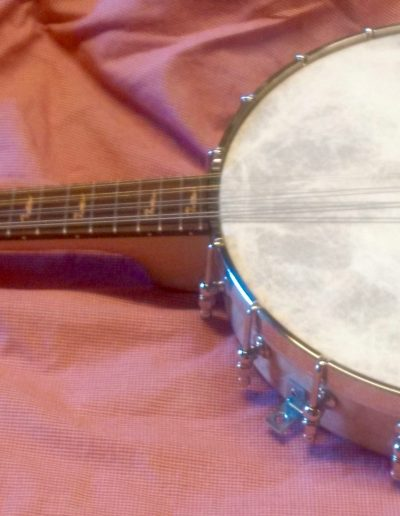 Pattison Banjolin without Resonator attached