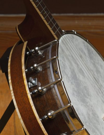 Side View of the Mahogany Whyte Lady